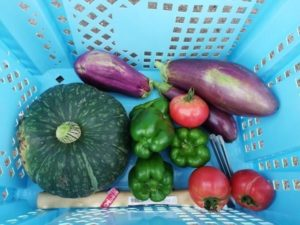 自家用なら野菜づくりは難しくない